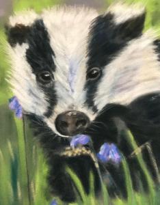 Valerie Duncan, Badger.   Pastel on paper 20cm x 17cm £50 unframed, £75 framed.