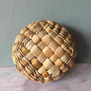Janice Hall, Sea Urchins, verso