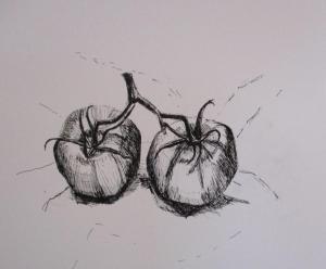 Amanda Wheatley, Large Tomatoes, ink & pen on cartridge paper,  28x28cm, £30