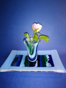 Janet Imre, Vase & Tray, fused glass,12x25x15cm, NFS