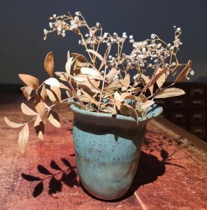 Emily Peebles,  Organic Vase. Stoneware  9.5cm x 10.5cm.   NFS
